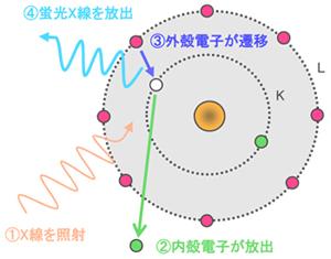 MST [XRF]蛍光X線分析法